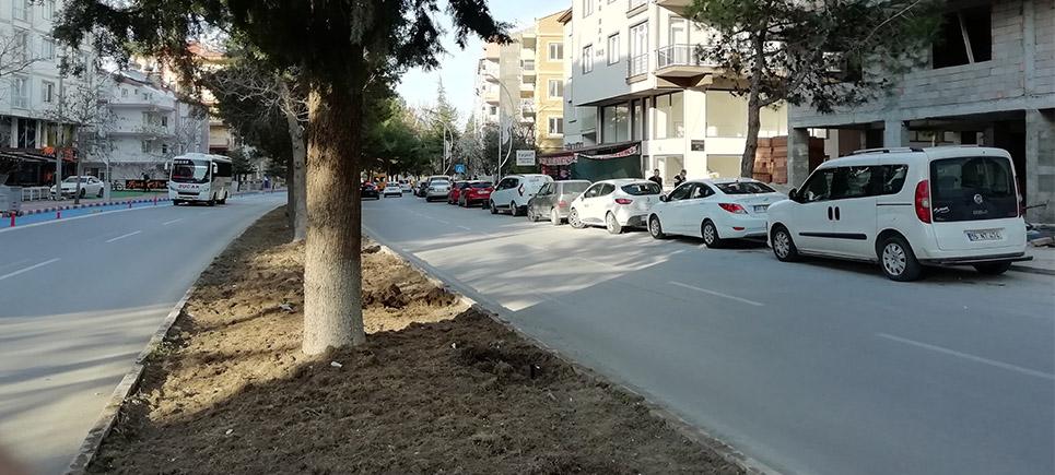 Şirinevler Mahallesi sakini Burdur Belediyesi'nden çözüm istiyor