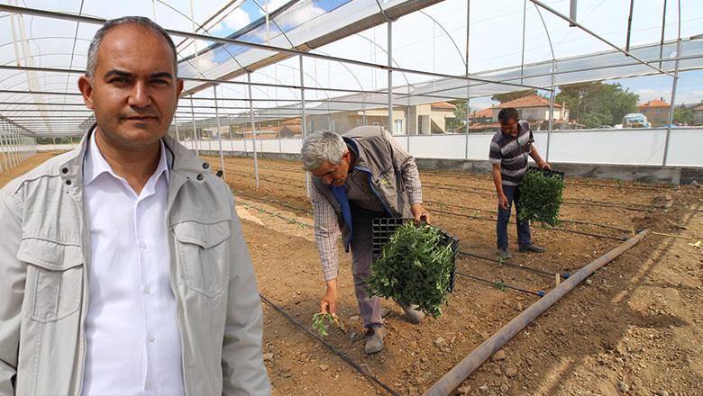 Başkan Alagöz'den yerli tohum üretim müjdesi