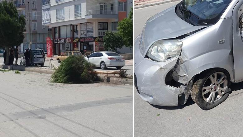Burdur'da otomobil ağaç devirdi